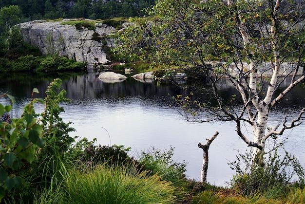 Un lac avec le reflet des arbres entouré de formations rocheuses à preikestolen, norvège