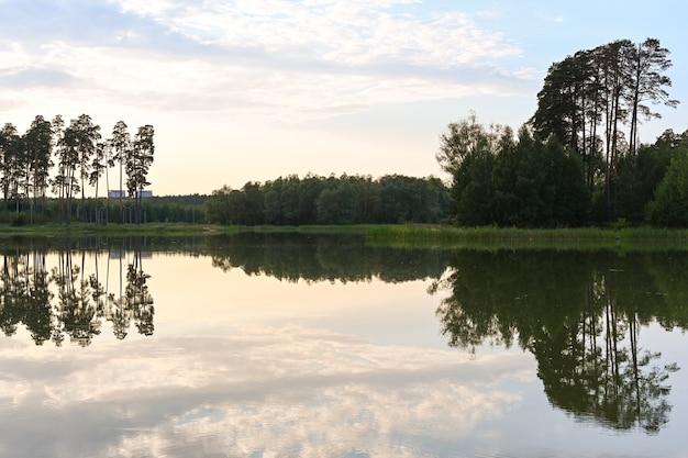 Le lac, le rivage, l'herbe et la surface de l'eau au coucher du soleil entourés d'une forêt verte dense. lac lebyazhye, kazan. paysage d'été.