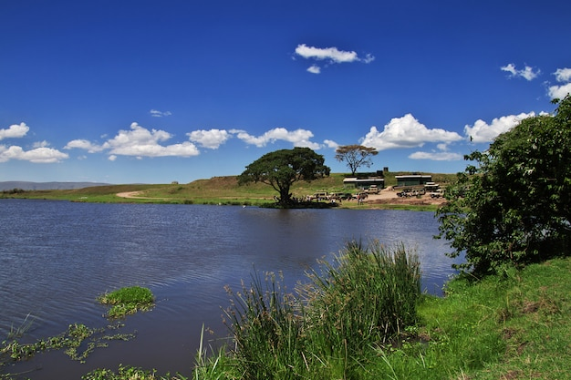 Lac en safari au kenya et en tanzanie, en afrique