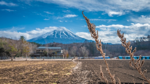Lac serene fuji mountain view