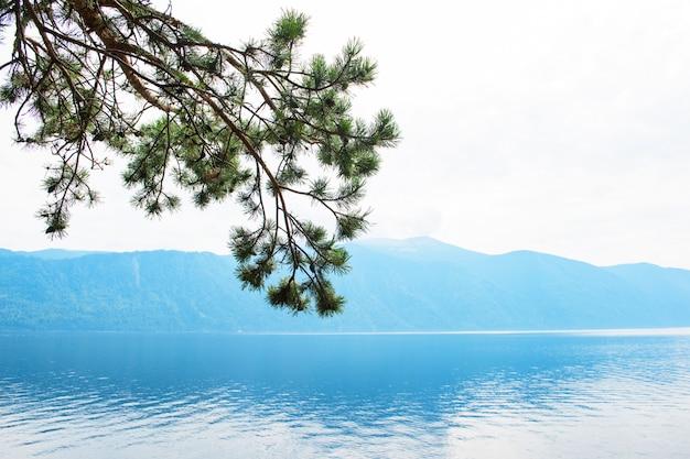 Lac teletskoïe dans les montagnes de l'altaï