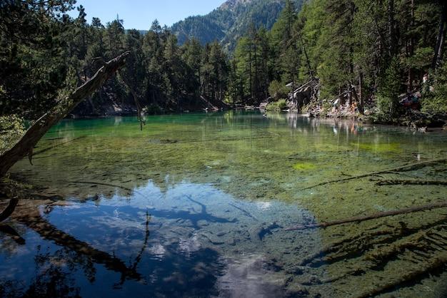 Un lac vert en montagne