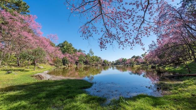 Lac avec vue sur le paysage naturel