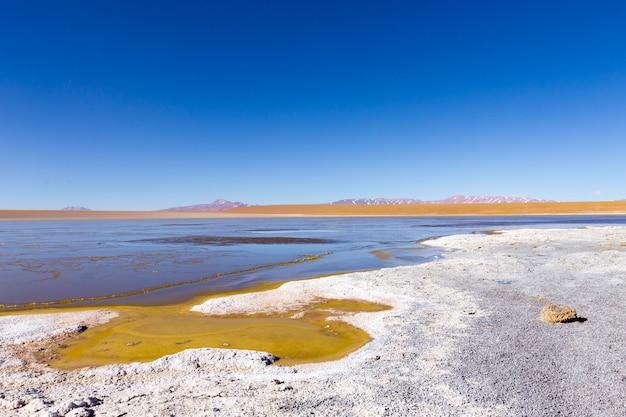 Lagune de kollpa kkota en bolivie