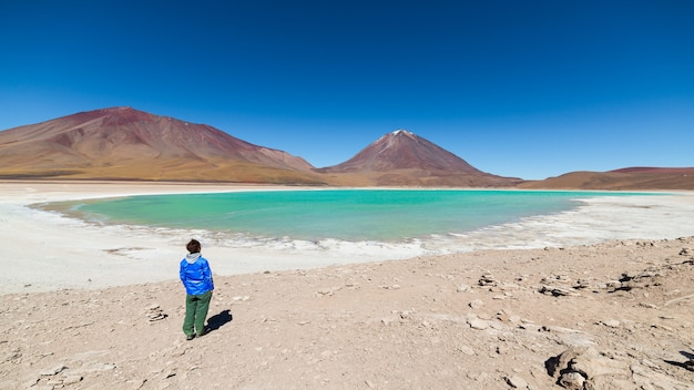 Lagune verte et volcan licancabur dans les andes boliviennes