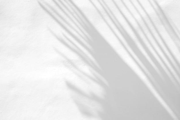 Laisse une superposition d'ombre naturelle sur un fond de texture blanche, pour une superposition sur la présentation du produit, la toile de fond et la maquette, concept saisonnier d'été