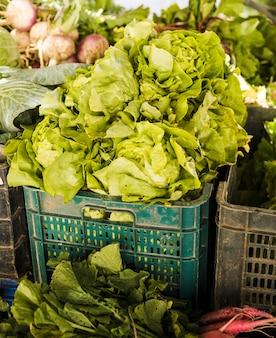 Laitue pommée verte en vente sur le marché aux légumes