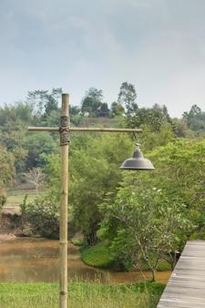 Lampe le long d'une allée menant au jardin tropical