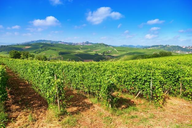 Langhe est une région vallonnée de la province de coni en piémont
