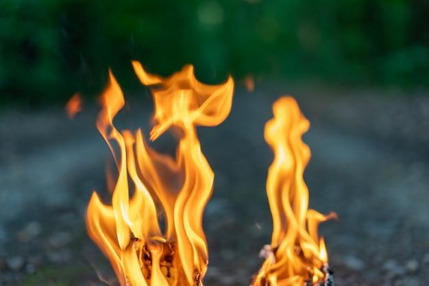Langues de flammes