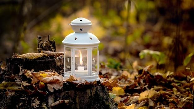 Lanterne avec une bougie dans les bois sur une souche parmi les feuilles d'automne