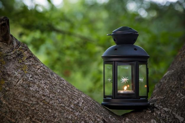 Lanterne avec une bougie dans la forêt d'été
