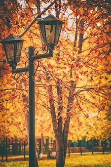 Lanterne vintage dans le parc de la ville l'arrière-plan des arbres d'automne, image tonique, mise au point sélective