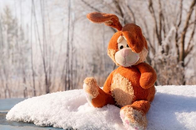 Lapin lièvre, un petit jouet vieux et minable, fabuleux assis sur un banc de neige dans la forêt et en attendant pâques. carte postale fabuleuse, espace copie