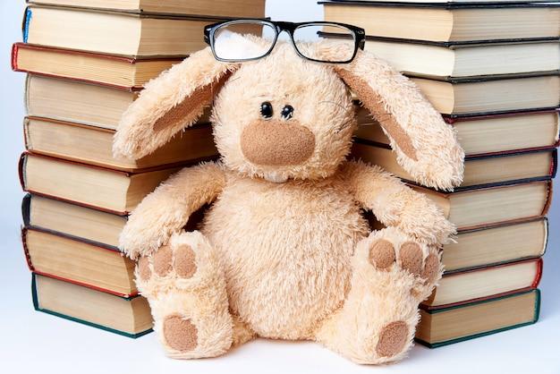 Un lapin en lunettes se trouve près de piles de livres.