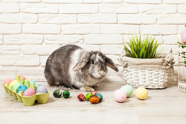 Lapin de pâques à la maison avec des œufs et de l'herbe verte