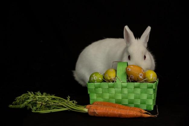 Lapin de pâques avec panier d'oeufs et de carottes