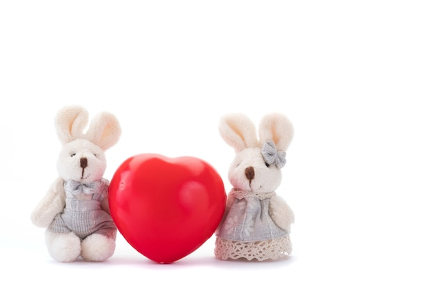 Lapins avec coeur rouge. concept de la saint-valentin sur fond blanc