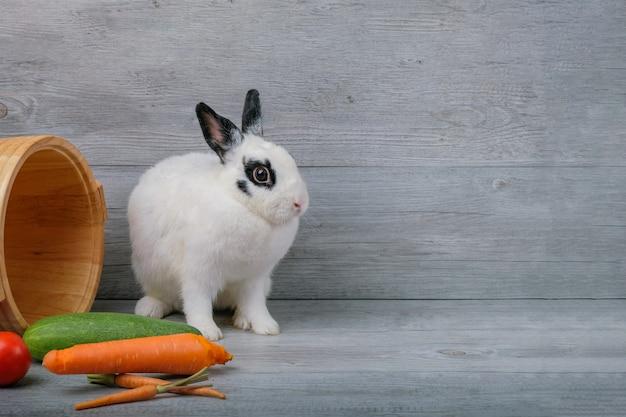 Lapins sur des planchers en bois, carottes, concombres, tomates et barils sur des planchers en bois