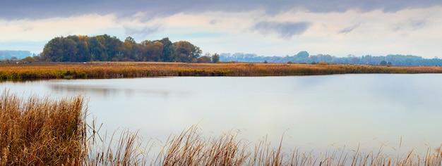 Large rivière avec des roseaux sur le rivage et forêt au loin par temps nuageux