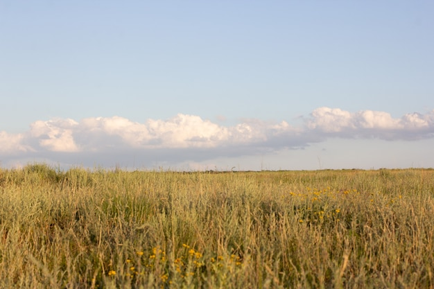 Large steppe avec de l'herbe et des nuages région de stavropol russua