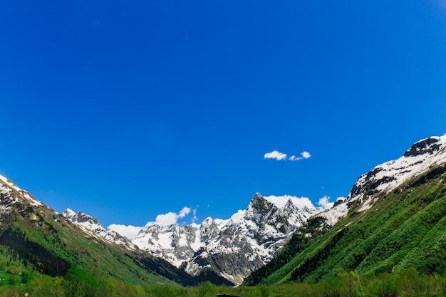 Large vallée de montagne avec forêt verte. grandes montagnes enneigées. roches. paysage de nature sauvage