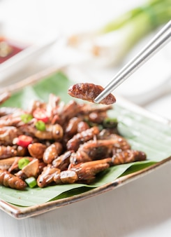 Larve frite sur des baguettes, manger des insectes comestibles et de la nourriture locale en thaïlande