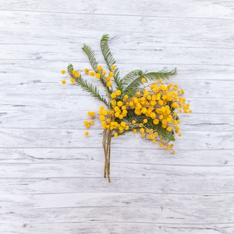 Lay plat de belles fleurs sauvages
