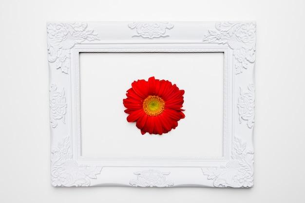 Lay plat de cadre avec concept floral