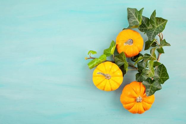 Lay plat fait de citrouilles et de feuilles