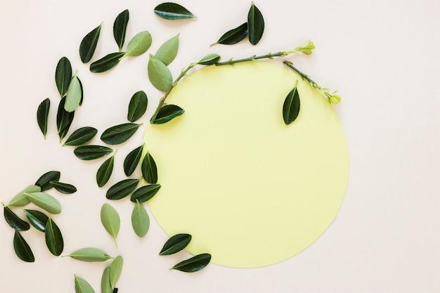 Lay plat de papier rond sur les feuilles