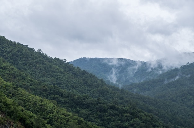 Un léger brouillard recouvre la haute montagne.