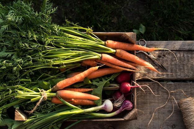 Légumes biologiques frais dans une boîte en bois
