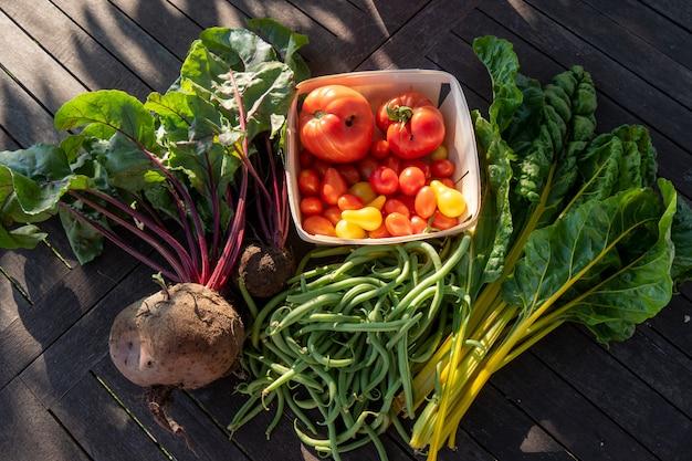 Légumes biologiques de jardin, haricots, betteraves, bette à carde et tomates