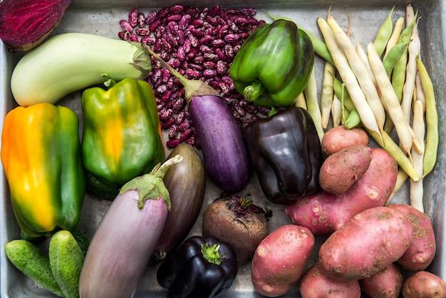 Légumes fraîchement cueillis chez nous
