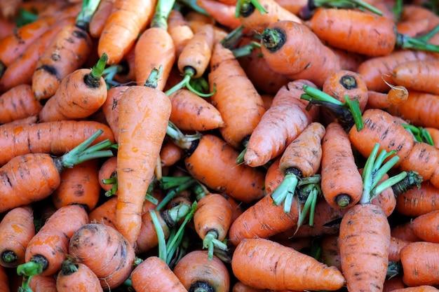 Légumes fraîchement récoltés biologiques.