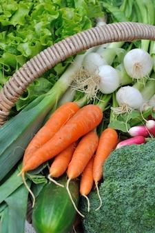 Légumes frais dans un panier