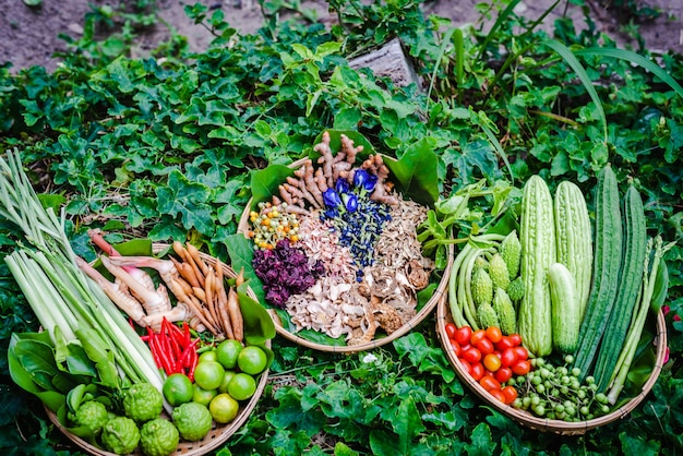 Légumes frais et herbes thaïlandaises sur panier en bambou