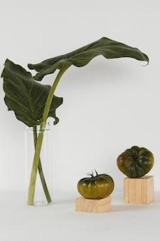 Légumes et plantes minimales abstraites