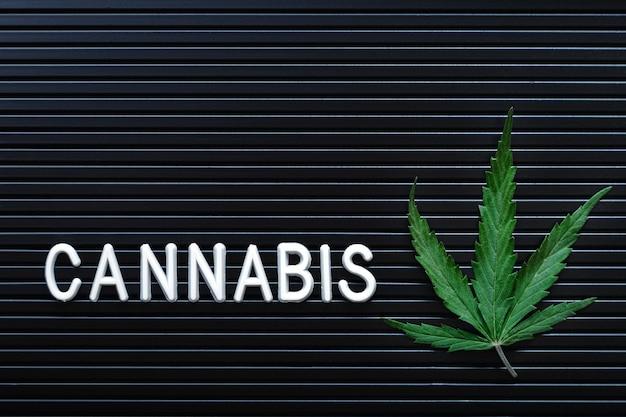 Lettrage de texte de cannabis et feuille de chanvre vert sur fond rayé noir. plante de marijuana médicale. cannabis sativa. copie de l'espace maquette. légaliser les mauvaises herbes.