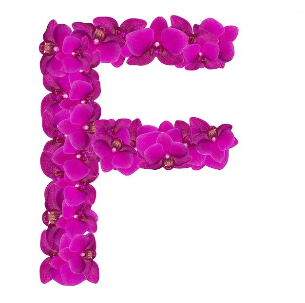 Lettre f faite de pétales de fleurs roses