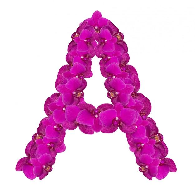 Lettre a faite de pétales de fleurs roses
