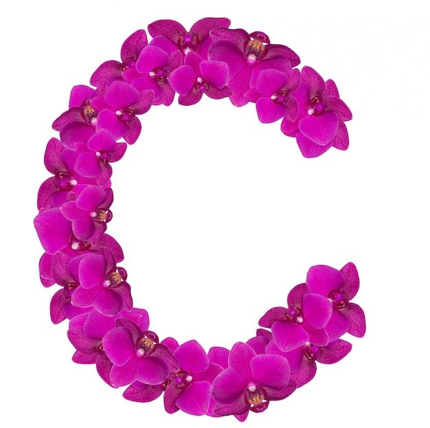 Lettre c faite de pétales de fleurs roses