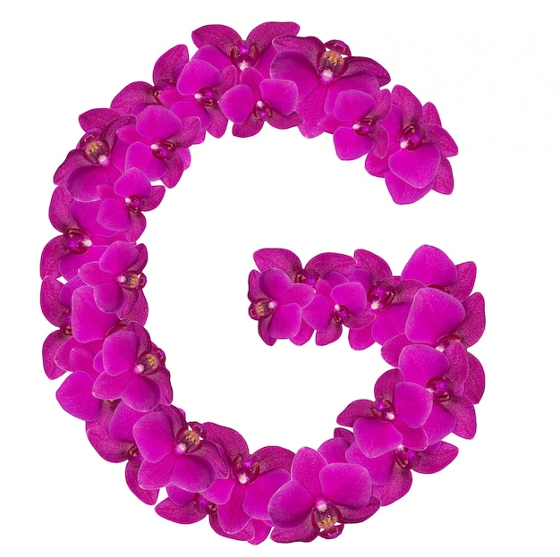 Lettre g faite de pétales de fleurs roses