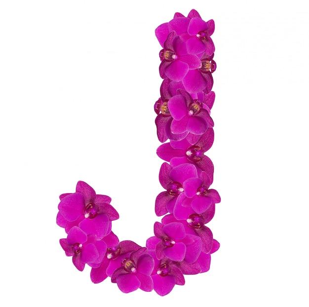 Lettre j faite de pétales de fleurs roses