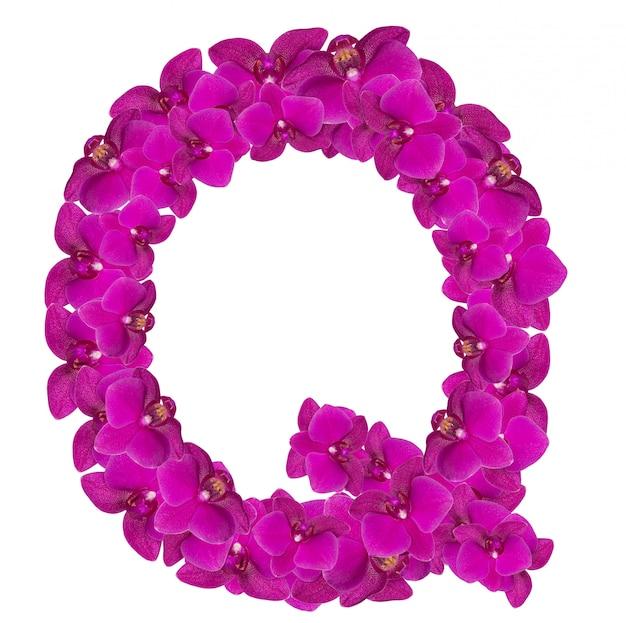 Lettre q faite de pétales de fleurs roses