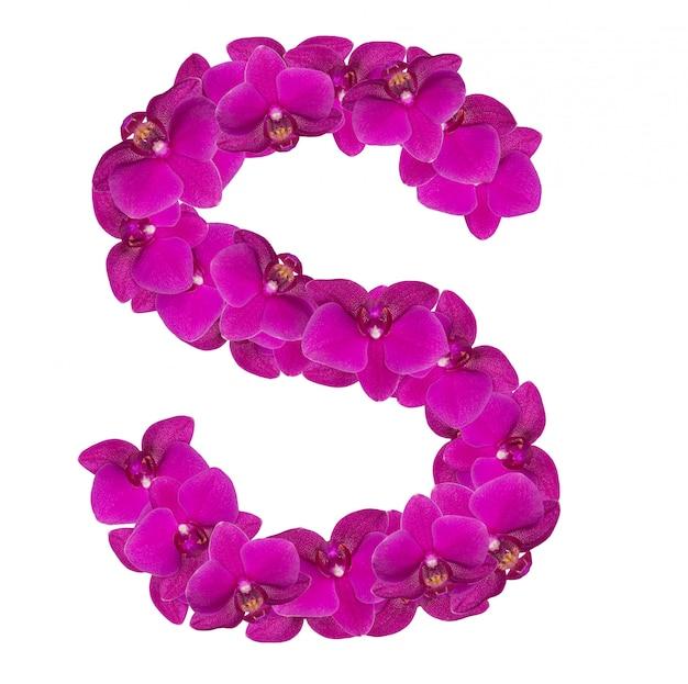 Lettre s faite de pétales de fleurs roses