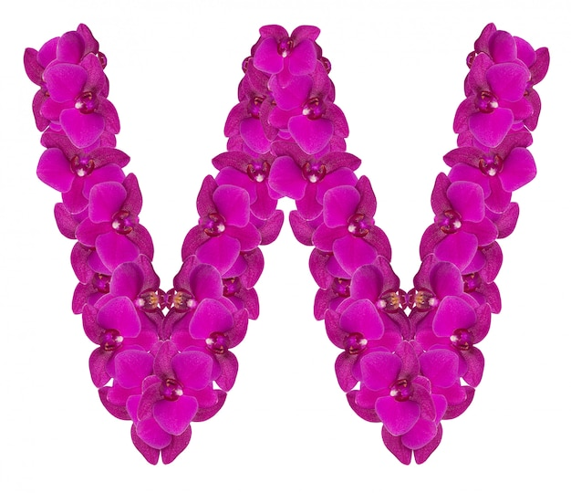 Lettre w faite de pétales de fleurs roses