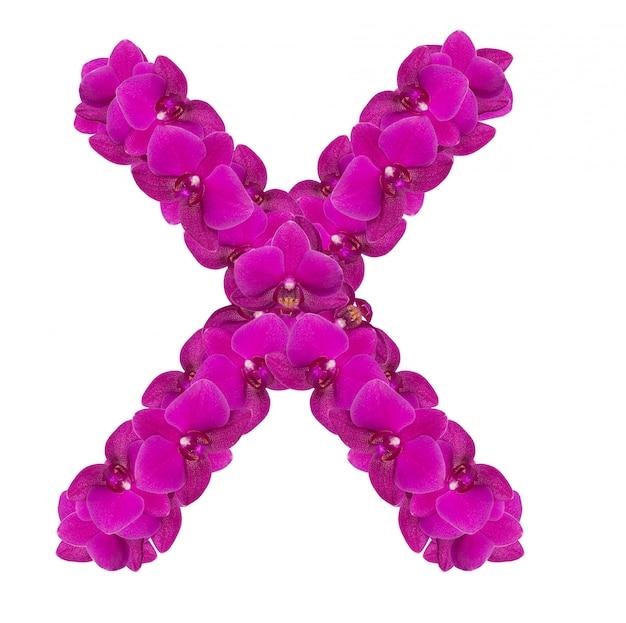 Lettre x faite de pétales de fleurs roses