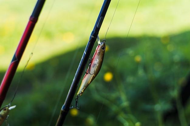 Leurre de pêche sur canne à pêche